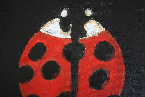 Lady's bug (up close)