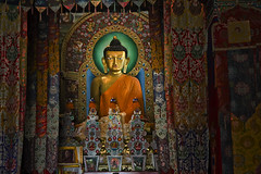 The Golden Buddha at Tawang in Arunachal Pradesh (Anoop Negi) Tags: china portrait india hat yellow temple photography for photo media image photos buddha delhi indian border bangalore creative culture buddhism courtyard images best tibet monastery indie po ritual mumbai sect anoop indien mcmahon inde pradesh negi arunachal tawang dispute   ndia thangkas photosof  monpa gelugpa  ezee123  intia  gelukpa n bestphotographer   imagesof anoopnegi     jjournalism  ndia n indi