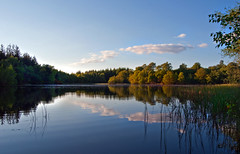 Glenamour loch (Mark McKie) Tags: water clouds reeds day bluesky clear loch galloway newtonstewart nikond90 minnigaff