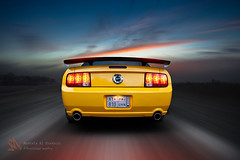Wild horse #3 (Mustafa Al Shakhori) Tags: wild horse motion yellow speed canon automotive rig mustang 2470mmf28l rigshot automotiverigs eos5dmarkii mustafaalshakhori