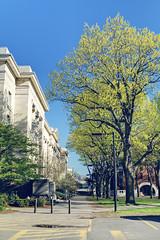 Vintage Harvard: Langdell Library (Harvard Law School) (NKCPhoto) Tags: school college vintage spring library harvard 80s 70s law 1970 1970s harvarduniversity 1980 1980s hdr hls harvardlawschool harvardlaw harvardcollege langdell