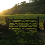 Gate & Sunset