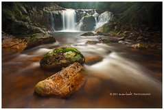 Before the Falls (Dylan Toh) Tags: rock forest river landscape photography waterfall rainforest stream tasmania dee everlook bluetier hallsfalls