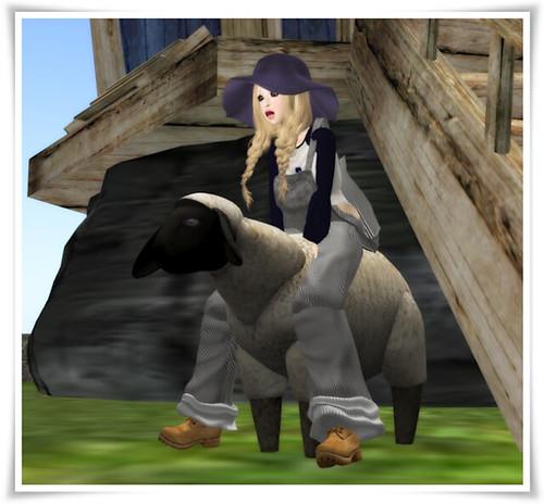 [SP]Hunt_2011_May_BOX