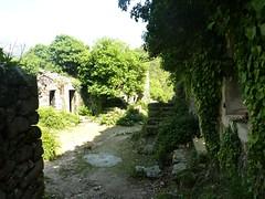 Visite du village ruiné de Tassu avant d'arriver à Marignana