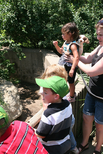 The Hoerners and Kaidence check out an exhibit at the zoo.