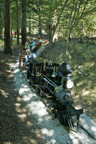 Engineer Grant Smith guides the #4 steam locomotive, known as Laurel, through Wet Neck Curve on the Redwood Valley Railway, Thursday, July 20, 2006 at Tilden Park in Berkeley, Calif. (Staff photo by D. Ross Cameron)