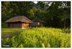 tourist cottage, Miao, Arunachal Pradesh (Arif Siddiqui) Tags: travel india green tourism beautiful butterfly river landscapes asia places tribal hidden tribes miao northeast arif arunachal changlang siddiqui butterflyindia