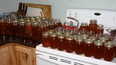 a LOT of honey