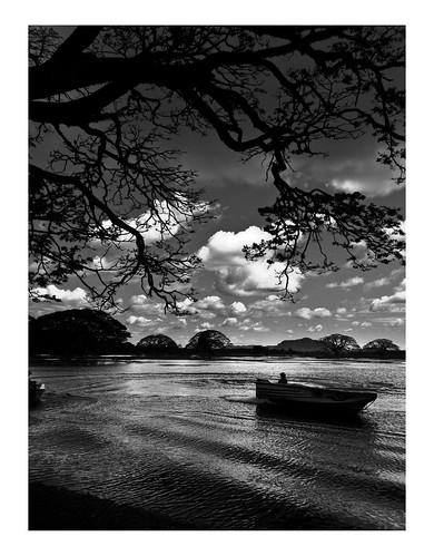 Thisaa Reservoir by Saj Fernando