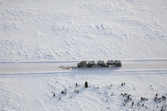 Truck on the Ice Road (Jason Pineau) Tags: road winter canada truck mine nt riotinto nwt aerial mining northwestterritories portage trucking bhp debeers ekati winterroad iceroad diavik billiton snaplake diamondmine lockhartlake