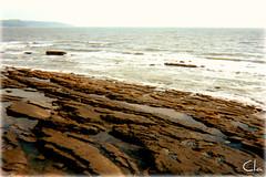 The sad Welsh ocean (dClaudio [homofugit]) Tags: ocean old sea cold wet water rock landscape sadness bay rocks paint sad carmarthenbay
