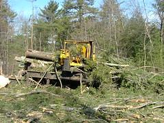 DSCF4727 (M.Bouzakine) Tags: forestry logging skidder fellerbuncher