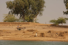 West Africa-5005