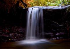 The light above (edwinemmerick) Tags: longexposure cliff 20d water pool rock creek canon river eos waterfall pond stream australia bluemountains filter nsw aussie aus edwin lawson nd8 emmerick edwinemmerick
