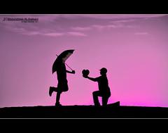 (Abdulrahman AL-Dukhaini || عبدالرحمن) Tags: nikon 2010 d90 غموض حزن 1432 مشاعر عبدالرحمن abdulrahman نيكون مظلة lens18200mm سيوليت الدخيني aldukhaini