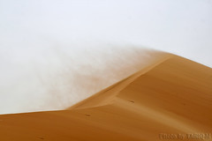 Blowing sand (TARIQ-M) Tags: texture sahara landscape sand waves pattern desert ripple patterns dunes wave ripples saudiarabia hdr app  blowingsand    canonef70200mmf4lusm   canon400d        visipix  tariqm   flowsand tariqalmutlaq kingofdesert