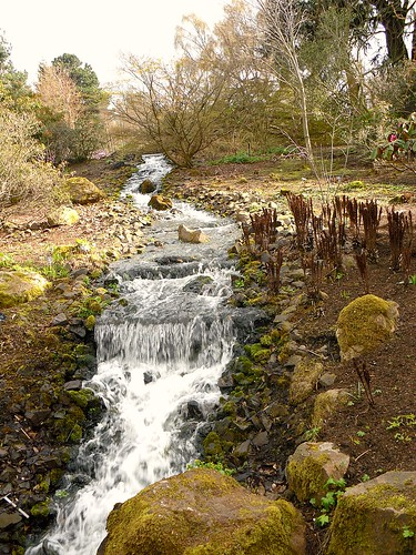 Waterfall, Botanic Gardens, Edinburgh