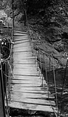 step by step / paso a paso (Marco Villani) Tags: bridge puente costarica stepbystep pasoapaso marcovillani