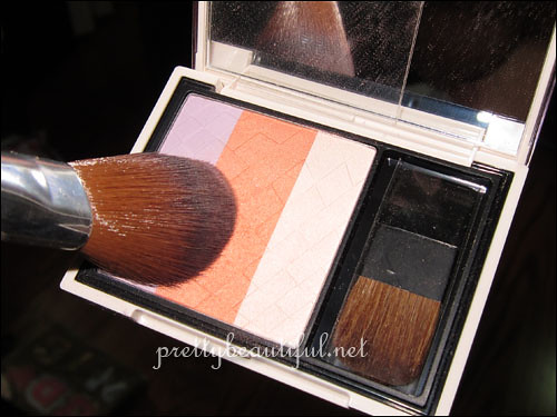 Fresh Modernist Blusher