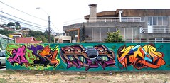 Abse Fros Fros. (COLOR IMPOSIBLE CREW) Tags: chile graffiti crew asie lcp talcahuano zade abse 2011 fros dgf concegraff