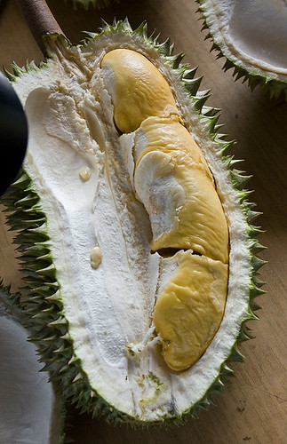 hor lor durian from raub orchard
