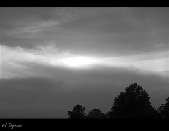 Sky's Light (m dysart) Tags: above trees light sky sun nature clouds canon dark outdoors blackwhite cool glow shine tn bright tennessee scenic peaceful calm glowing simple dysart