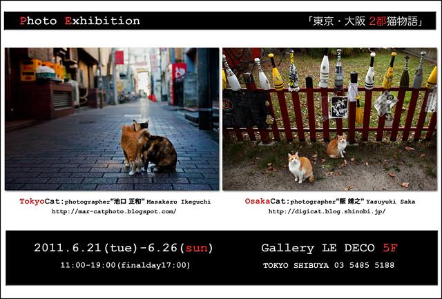 """PhotoExhibition """"Tokyo Osaka Cat Story """""""