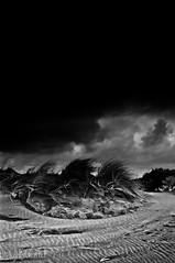 hail (gobo_x (marimba)) Tags: ocean sf sanfrancisco california bw white storm black beach hail landscape ir coast blackwhite sand wind pentax dunes voigtlander infrared modified 20mm k7 builtinflash hoyar72 fullspectrum blackwhitephotos ggnpc11 colorskoparslii