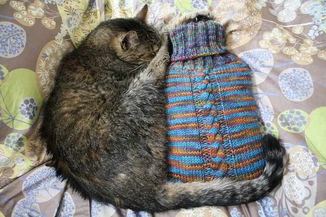 Hot Water Bottle Cozy