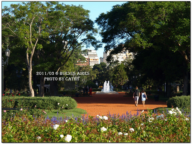 rose plaza-10