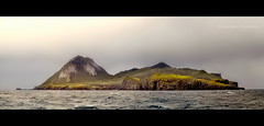 Nightigale Island... (Chantal Steyn) Tags: panorama green nature landscape island nikon conservation environmental shipwreck disaster oil oilspill d300 southatlanticocean tristandacunhaisland nightingaldisland msoliviawreck