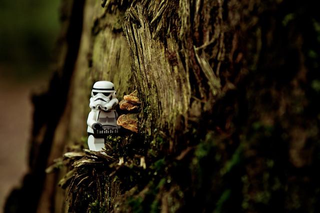 ST005 - Lost Trooper 2