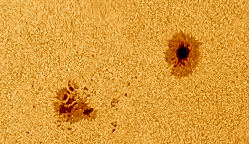 Sunspot 1195 - 250411 - 10:55UT by Mick Hyde