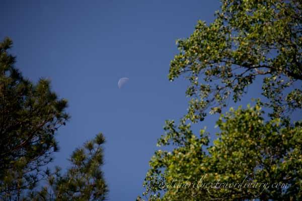 Sky_042511_0001web