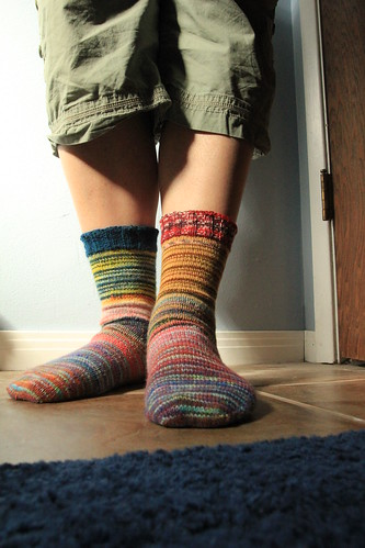blender socks