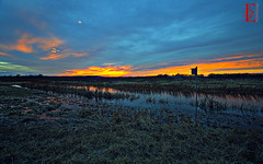 Meadowlark's Home (Kansas Poetry (Patrick)) Tags: sunset lawrencekansas bakerwetlands wakarusawetlands patricklooksforatiarafornancy