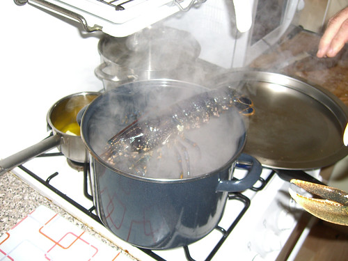 Lobster into the pot