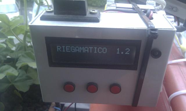 IMAG0429