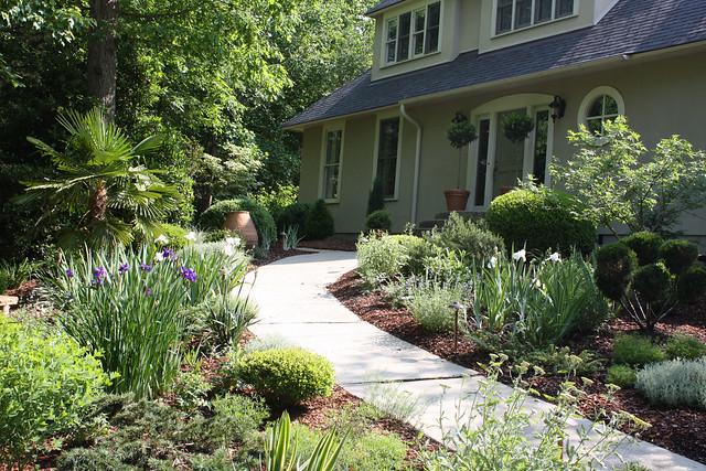 Greenwood garden: Mediterranean garden