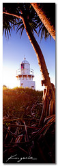 Fingal Light ([ Kane ]) Tags: light sky lighthouse tree grass dawn australia nsw qld queensland fingal fingalhead 13ratio kanegledhill wwwhumanhabitscomau kanegledhillphotography