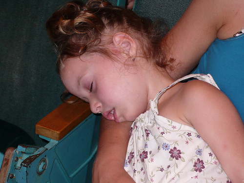 Daisy, sleeping at Rachel's dance recital