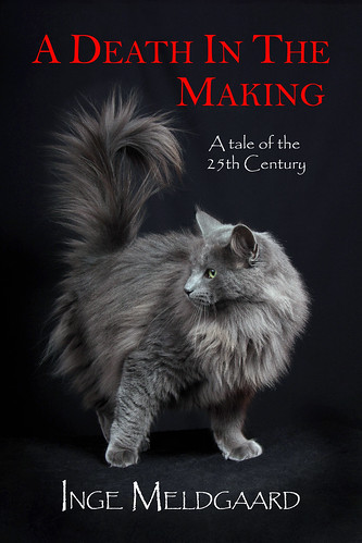 Front cover of 'A Death In The Making'