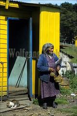 60000022 (wolfgangkaehler) Tags: chile old woman pet house southamerica cat indian oldwoman indigenous indigenouspeople southamerican indianwoman yaghan yamana navarinoisland yamanapeople