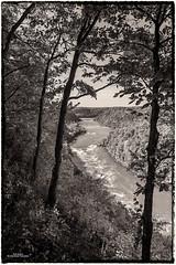 Lower Niagara Gorge (59roadking - Jim Johnston) Tags: ifttt 500px gorge river water sky trees travel rocks rapids niagara black white