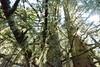 DSC_4043 (d90-fan) Tags: rauris raurisertal natur alpen salzburgerland österreich nationalpark npht hohe tauern wandern krumltal seidlwinkeltal