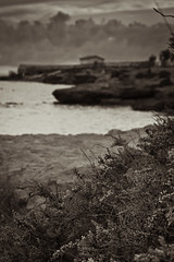 Nubes de atardecer (saparmo) Tags: bn murcia isla plana mazarrn playa mar nubes