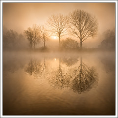 Sunrise Mist (mistymornings99) Tags: riverthames landscape river nature mist refelection photostyles weather bourneend