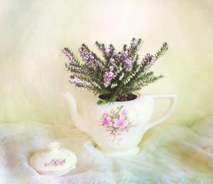 Still Life with Heather in Teapot (vesna1962) Tags: pink stilllife plant flower texture home floral vintage spring heather pastel fabric flowering teapot homeshots memoriesbook tatot artistictreasurechest magicunicornverybest selectbestfavorites selectbestexcellence magicunicornmasterpiece sbfmasterpiece stilllifephotoart sbfgrandmaster