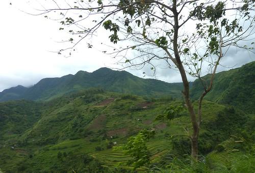Negros-San Carlos-Bacolod (110)